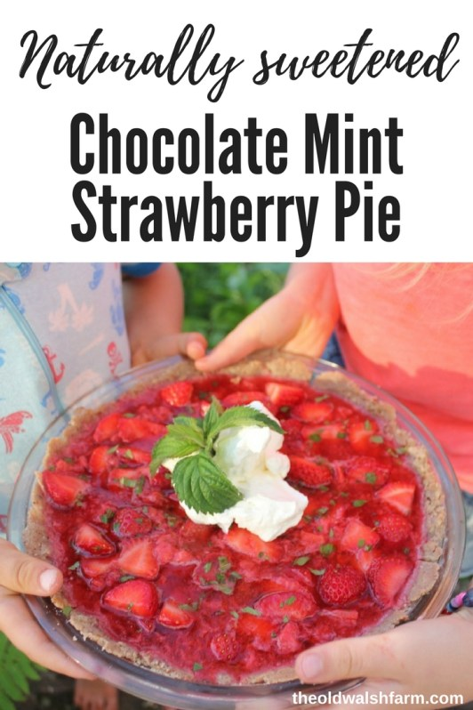Chocolate mint strawberry pie