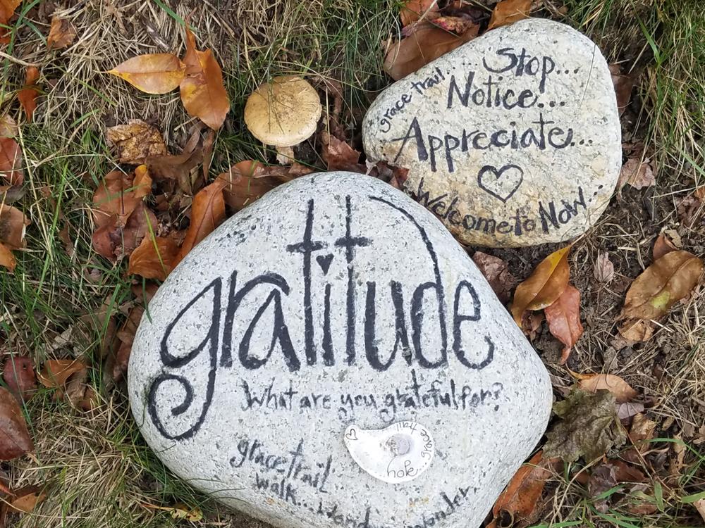 Start a good morning gratitude practice