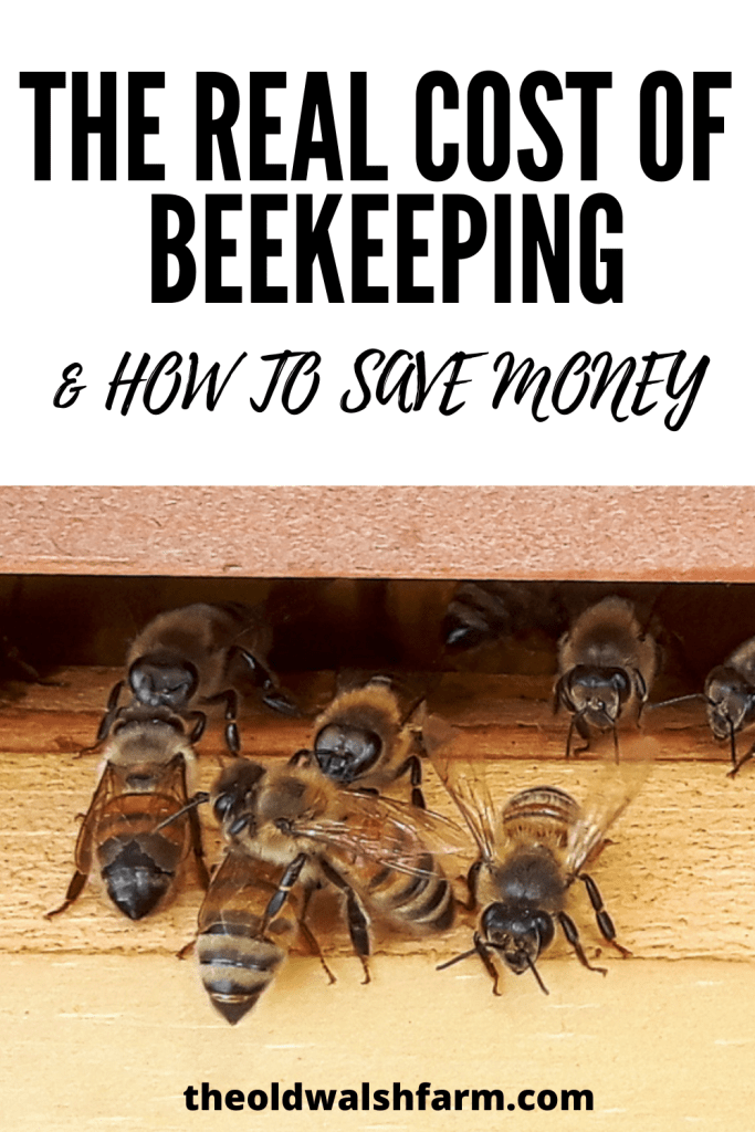 What is the cost of beekeeping?