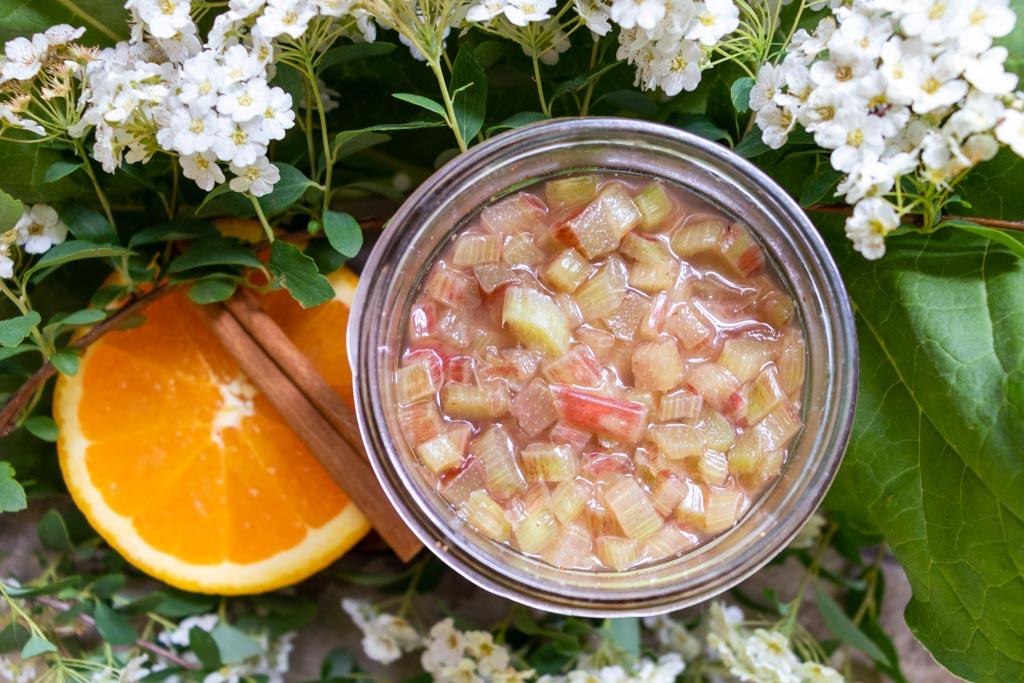 Lacto fermented rhubarb