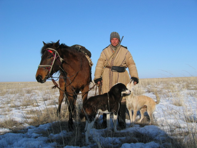 Kazakh Shepard With Dogs And Horse
