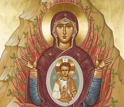 聖母長眠紀念日講道:如同聖母,孕育基督 Dormition Sermon: Have Jesus inside You as Holy Mother