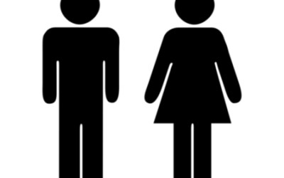Concerns With Complementarianism: Where Does That Leave Us?   Theology Gals