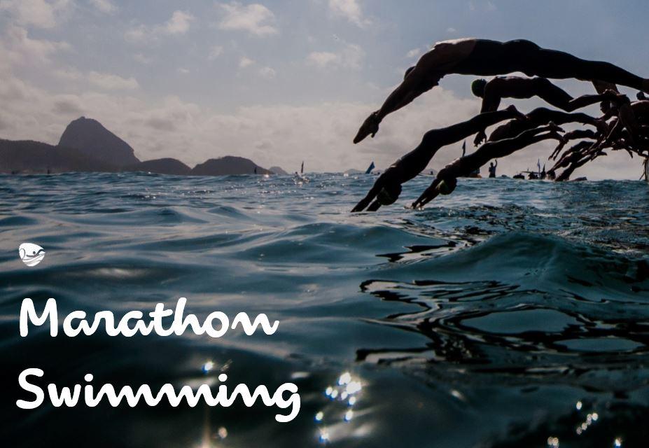 open water swimming fort copacabana