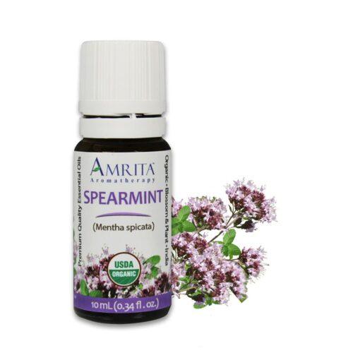 Amrita Essential Oil Spearmint - Organic EO-10mL