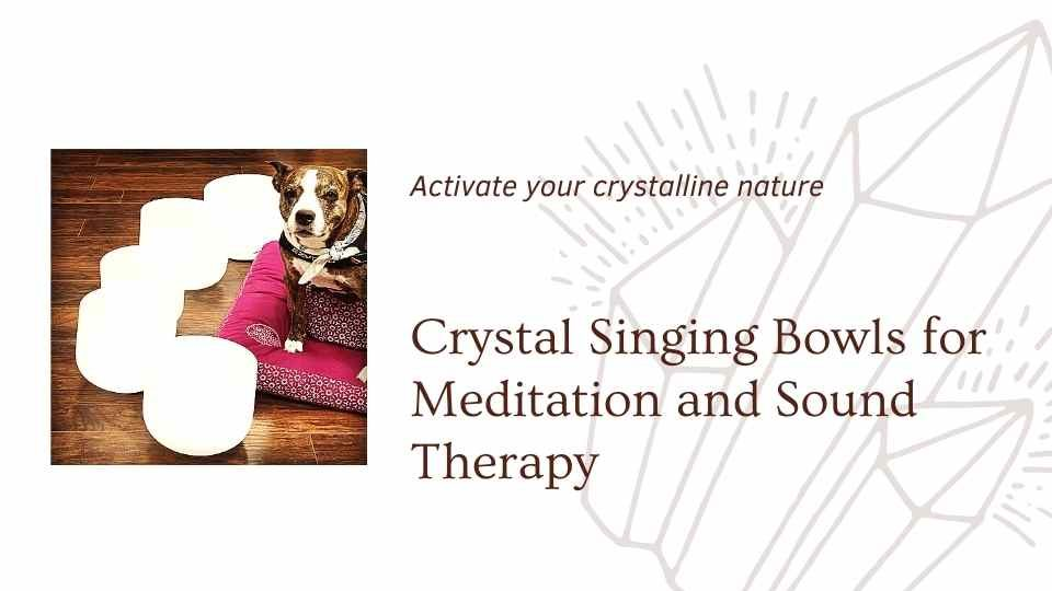 Image of dog sitting with crystal singing bowls saying activate your crystalline nature crystal singing bowls for meditaiton and sound therapy a blog by the om shoppe