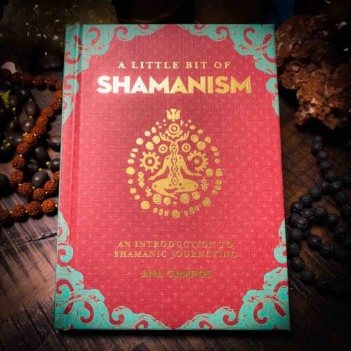 A Little Bit of Shamanism, front cover