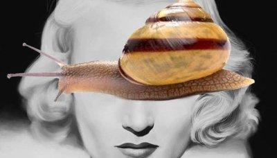 Snail Facial Naples FL