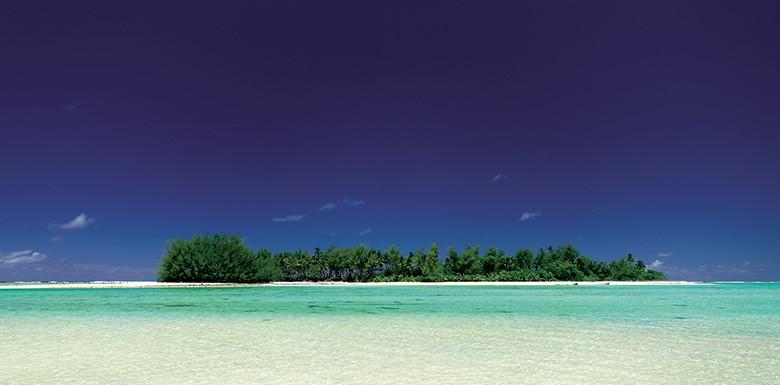 Polynesia Spa Naples FL