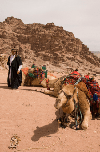 Gary Visiting Resting Camels on Frankincense Caravan
