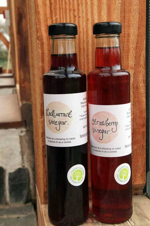 vinegar bottles from Lammas (Jude's smallholding) with one planet produce label