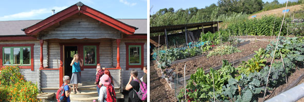 Swn y Coed One Planet Development at Rhiw Las, with Peni Ediker