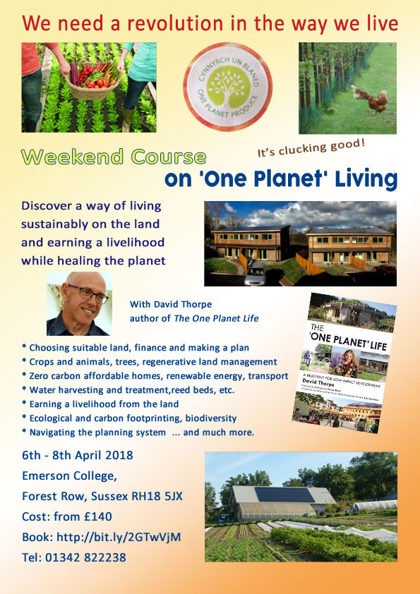 Poster for one planet living course with David Thorpe at Emerson College, Sussex