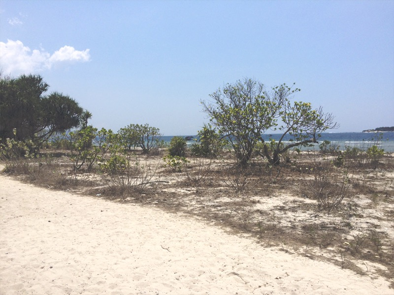 Empty beach at Gili Meno