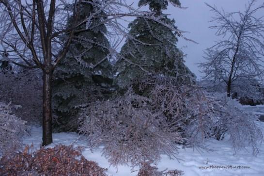 Winter 13-14 2