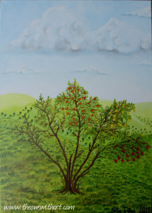 Pomagranet tree 7