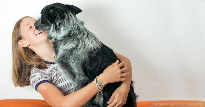 Jumping-Dogs-How-to-Keep-Your-Pup-from-Jumping-on-House-Guests-FEATURED-IMAGE