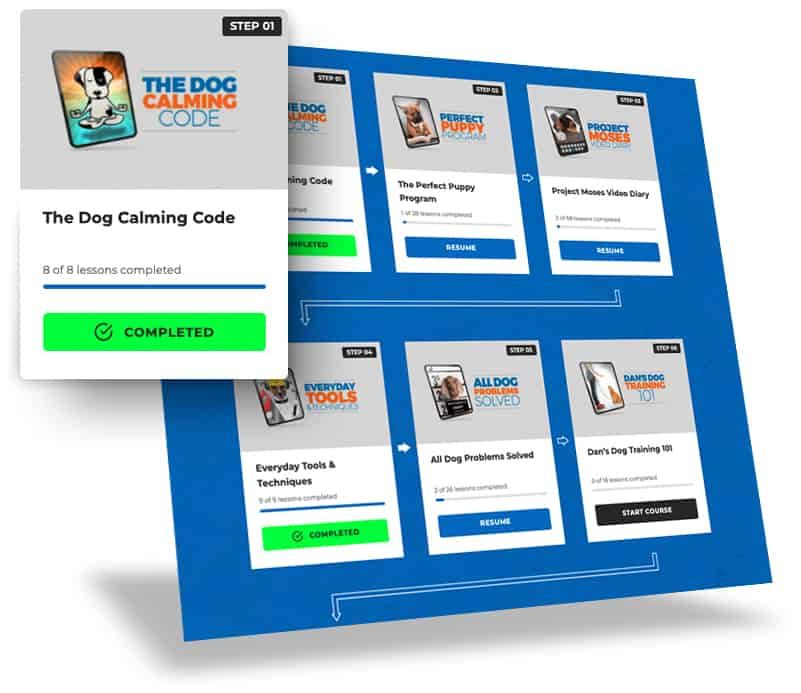 Doggy-Dan-Releases-New-State-of-the-Art-Membership-Website-BLOG-IMAGES-1