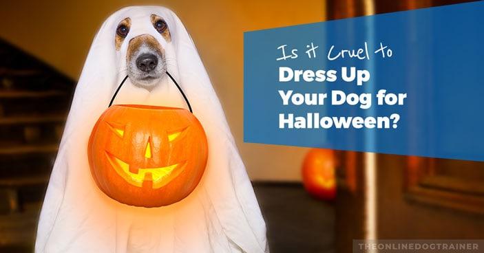 Is-it-Cruel-to-Dress-Up-Your-Dog-for-Halloween-HEADLINE