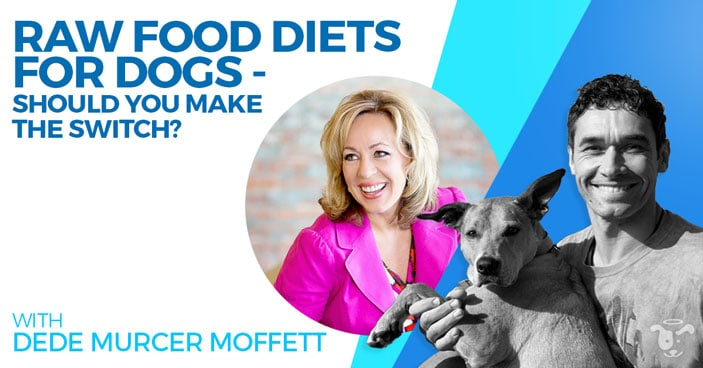 Doggy-Dan-Podcast-Show-HEADLINE-Raw-Food-Diets-for-Dogs-Should-You-Make-the-Switch-Moffett