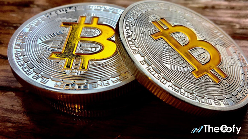 How Much is 1 Bitcoin (BTC) Worth Today? Bitcoin and BTC ...