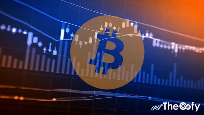 bitcoin market crash prediction