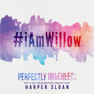 perfectly imperfect teaser 2