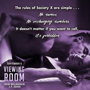 viewing-room-teaser-3