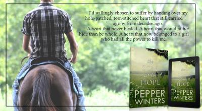 #BlogTour The Son and His Hope by Pepper Winters