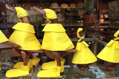 seattle-ducks-raincoats