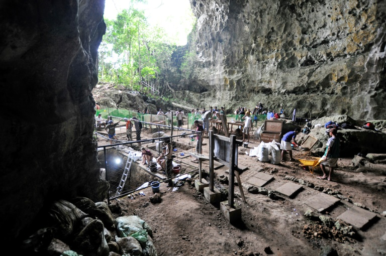 Welcome to the family: dig finds new early human species