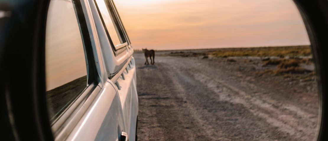 Namibia tourist attractions: 15 best places to visit