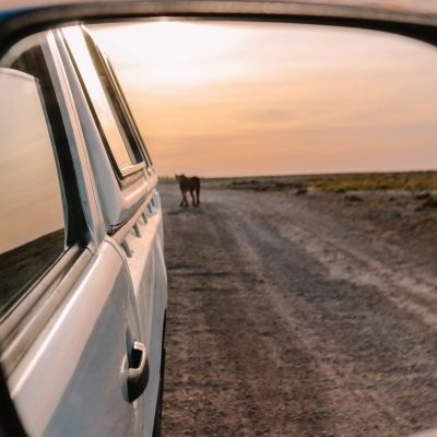 Camping sites in Namibia | Camping in Etosha National Park