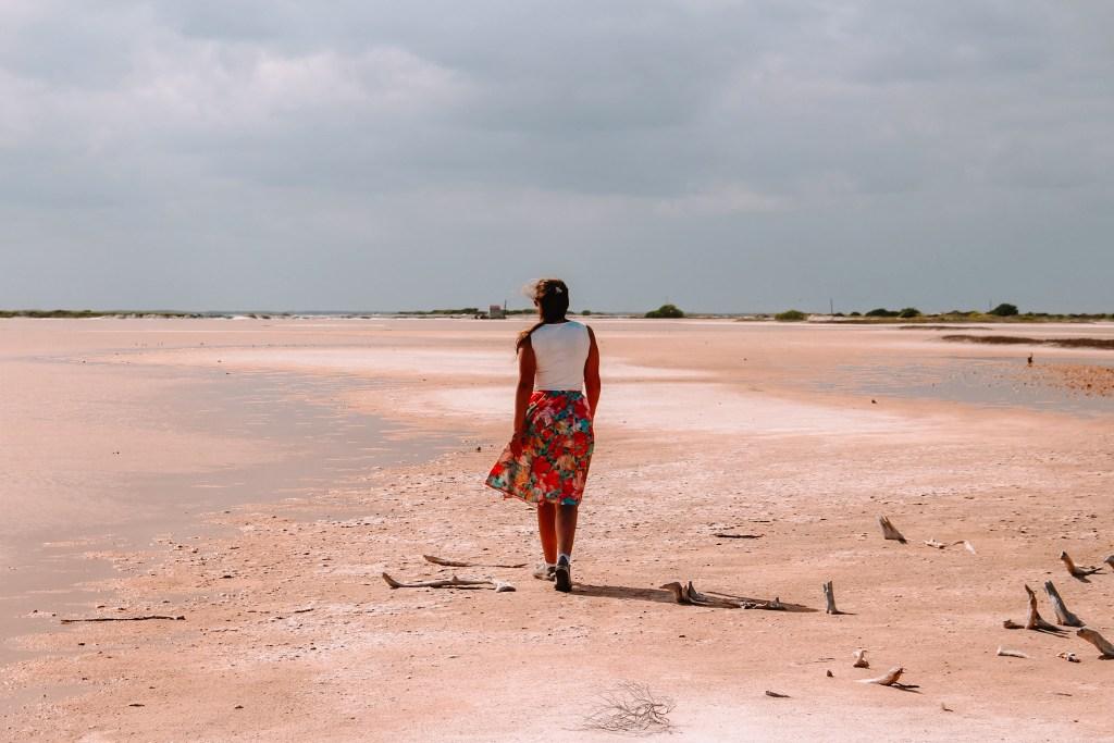 Pink Lakes Las Colorads Rio Lagartos Yucutan Mexico The Orange Backpack