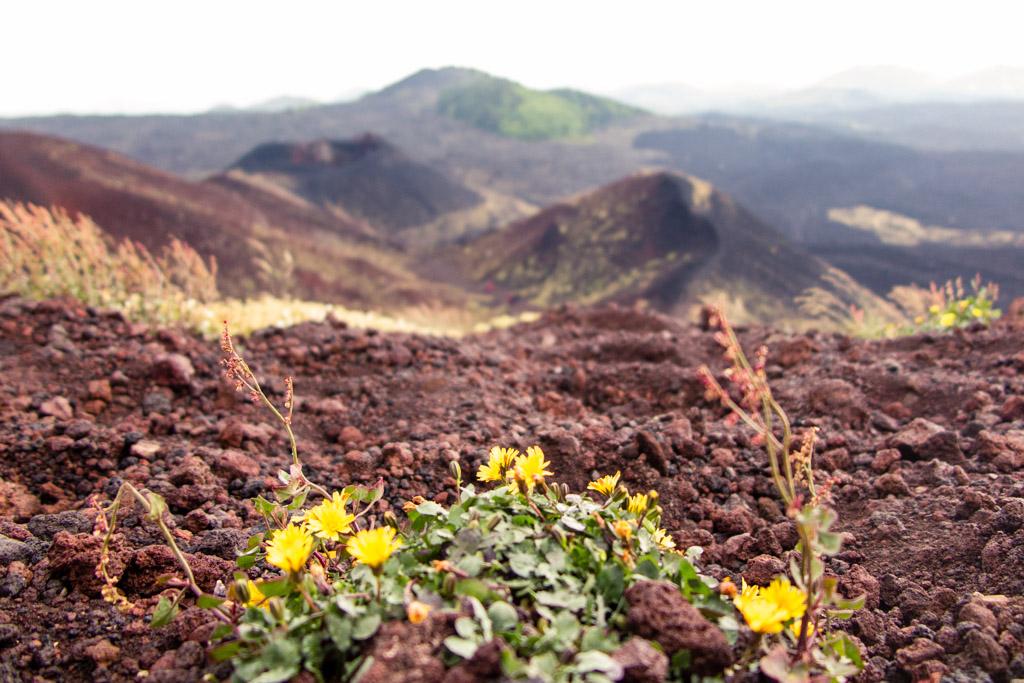 Kraters van Etna Sicilië | Beste vulkanen om over de hele wereld te wandelen