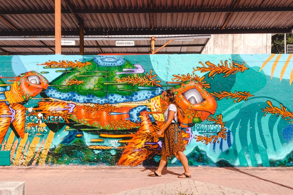 Sea Walls murals   Cozumel Yucatan Mexico
