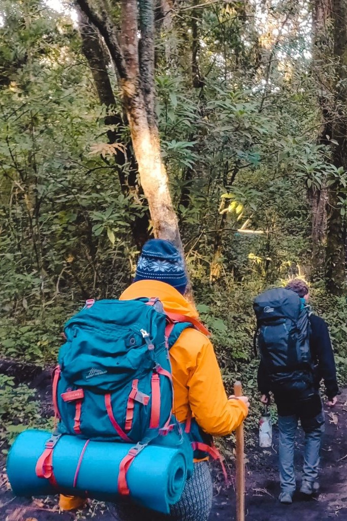 Volcano Pacaya-wandeling Guatemala