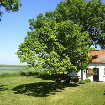 Bijzondere Overnachtingen - Mini Huisje Zeeland