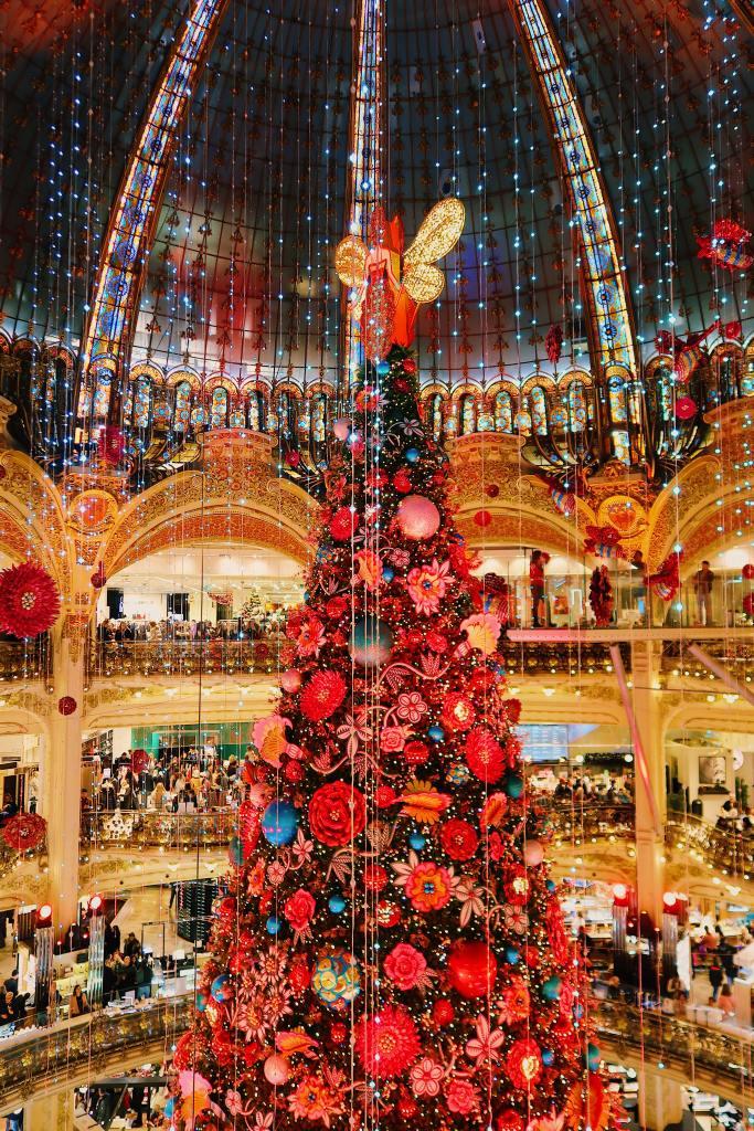 Parijs in de winter Europese stedentrip