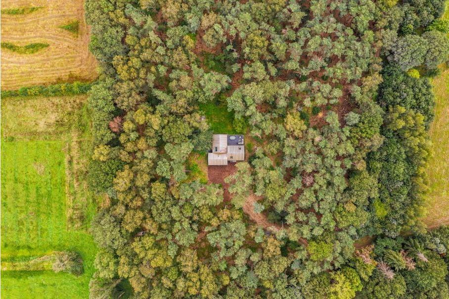 Afgelegen designvilla in bos Veluwe