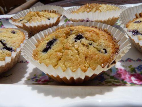 winberry muffins