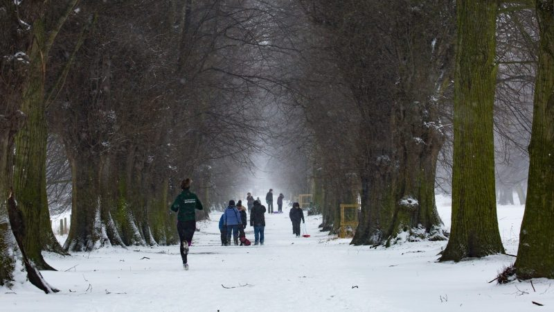 A woman running in the snow towards people sledging