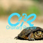 Tortoise on a sandy track overlaid by the Ordinary Runner logo