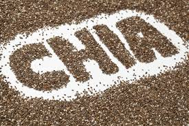 Looking For Some Added Protein? Health Benefits Of Chia Seeds!