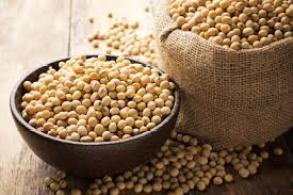 Soy Lecithin, Why Is It Bad For You?