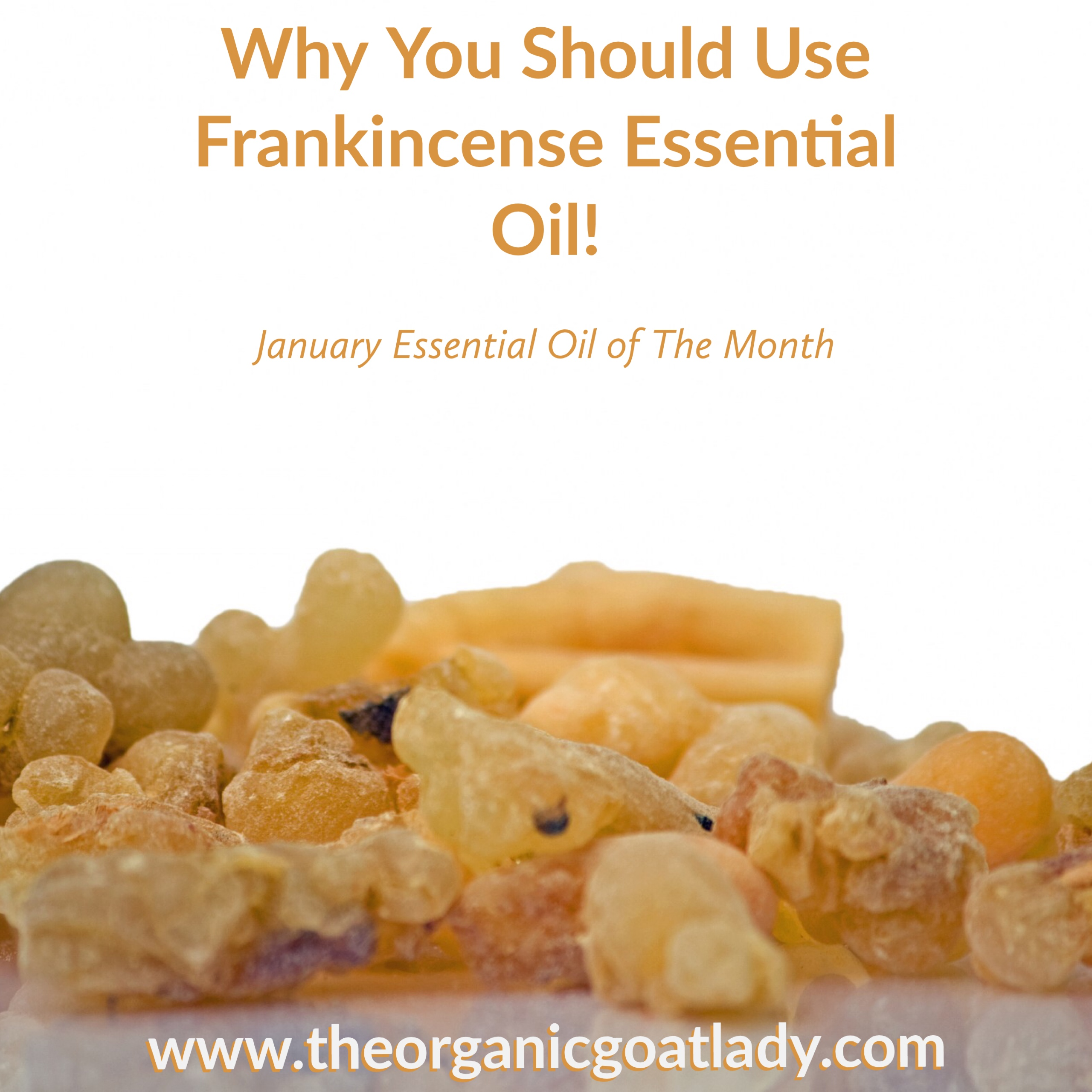 Why You Should Use Frankincense Essential Oil- January Oil of The Month