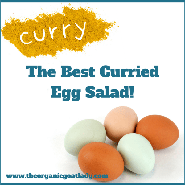 The Best Curried Egg Salad!