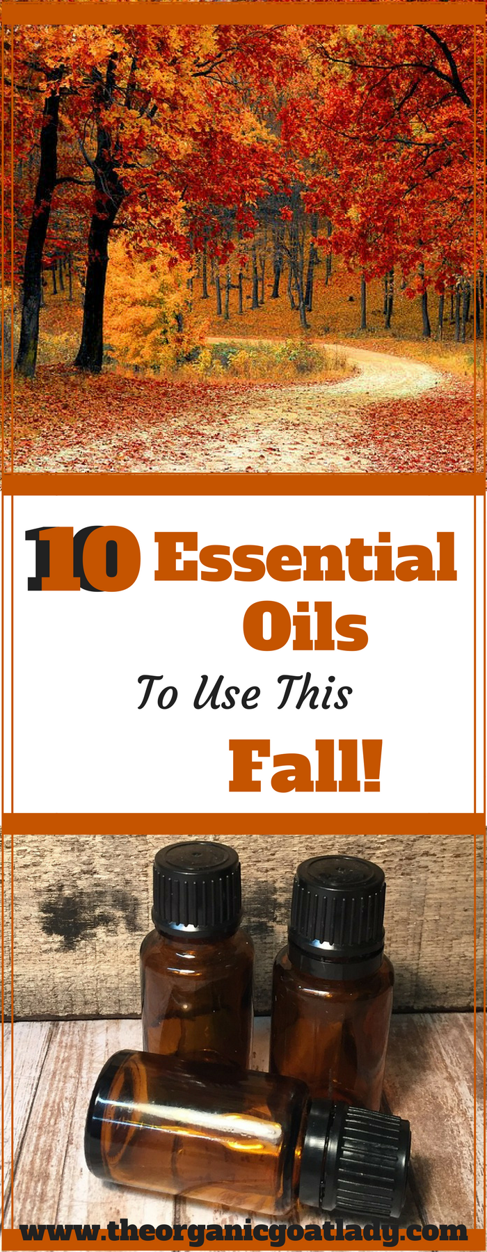 10 Essential Oils To Use This Fall!