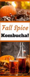 Fall Spice Kombucha!