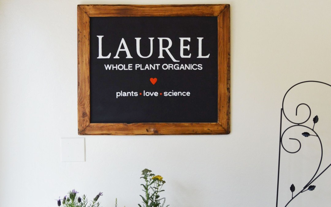 The Laurel Skin Studio Grand Opening